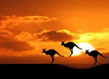 AUSTRALIA Y NUEVA ZELANDA FANTÁSTICA