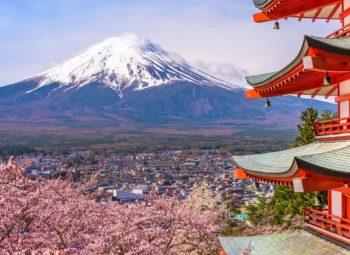 GRAN JAPÓN – 10 Dias